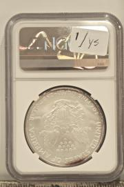 ONE OUNCE SILVER EAGLES